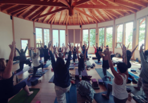 Awakening to Joy — A Day of Yoga & Meditation at The Sentinel